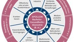 Einsatzfelder Bachelor Gesundheitsökonomie