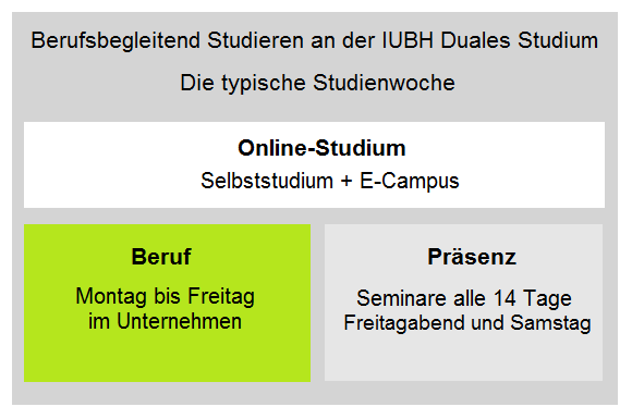 IUBH Duales Studium berufsbegleitend: Studienstruktur